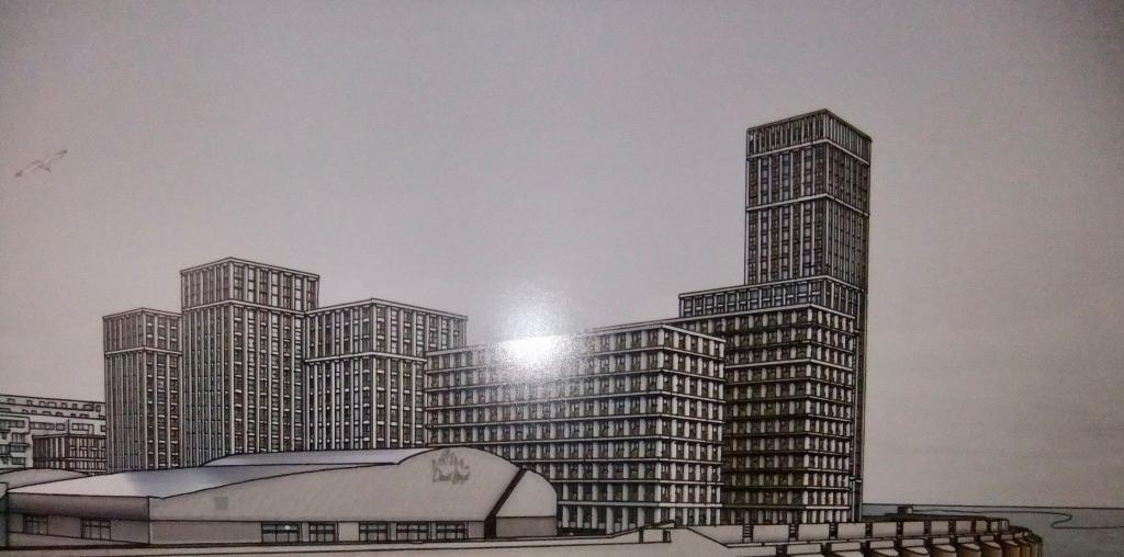 Brighton Society Objection to the Marina Development